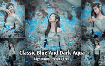 Classic Blue and Dark Aqua